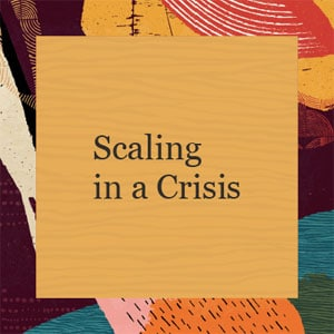 Scaling in a crisis: a focus on GovTech