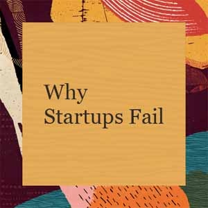 5 Reasons 90% of Startups Fail
