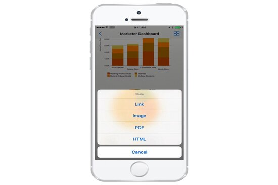 All dashboards and content are surfaced to iOS and Android mobile platforms