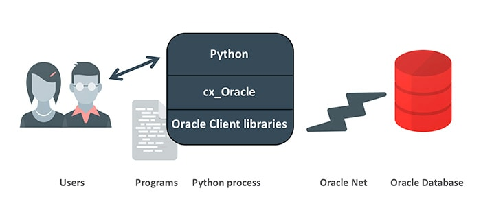 Figure 1: A graphical depiction of how Python interacts with Oracle Database through cx_Oracle