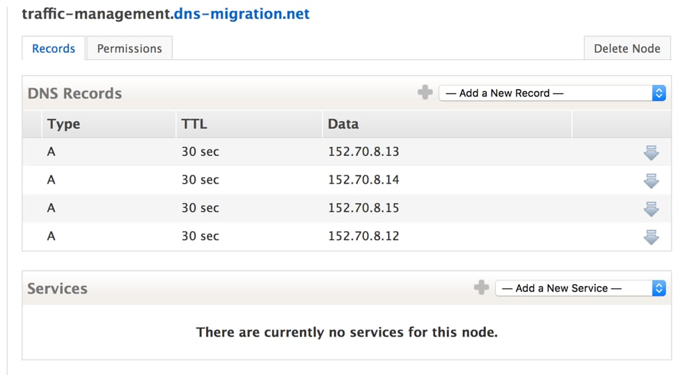Dyn Traffic Management DNS Records view