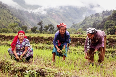 Growing More Sustainable Livelihoods in Agriculture