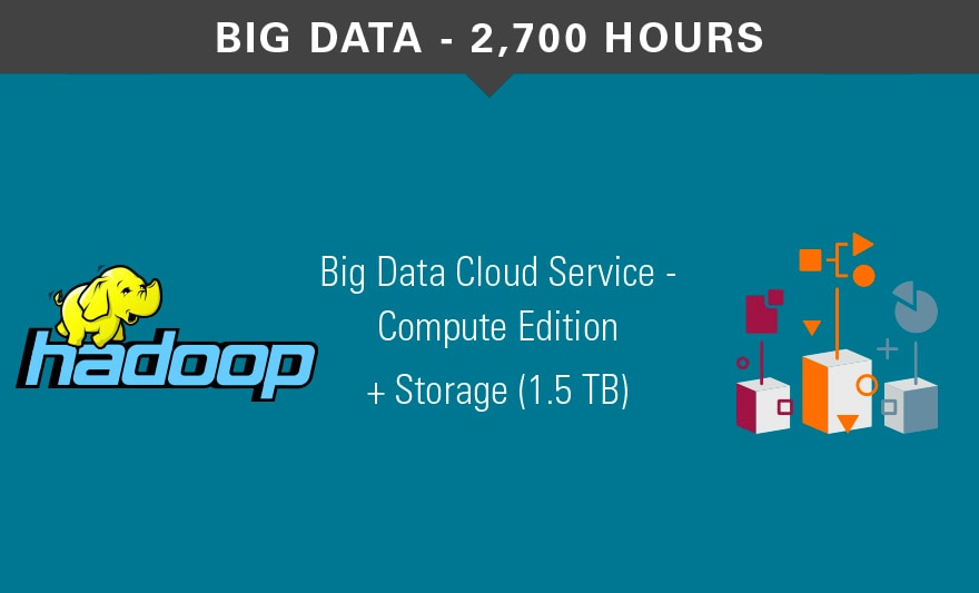 Cloud Big Data services