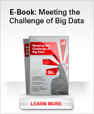 E-Book: Meeting the Challenge of Big Data