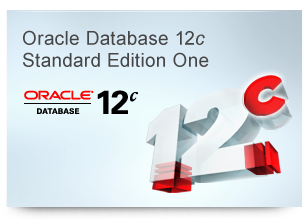 Oracle Database 12c Standard Edition One