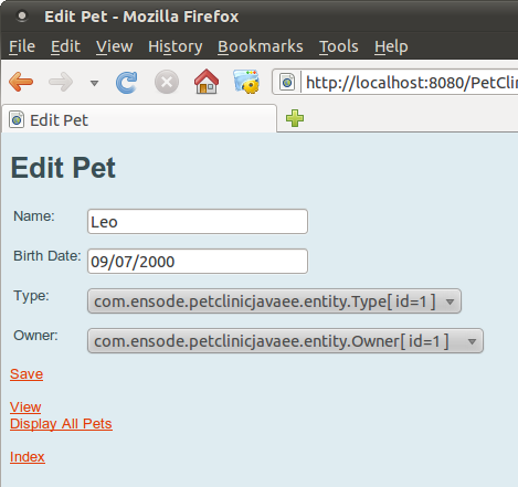 Figure 12: Generated Edit Pet Page