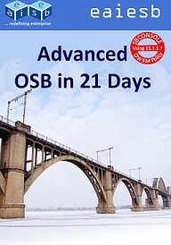 EAIESB Advanced OSB in 21 days book cover