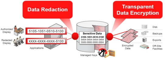 Oracle Advanced Security Overview