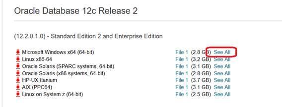 Instalación Y Configuración De Oracle Odbc Gateway 12c 18c
