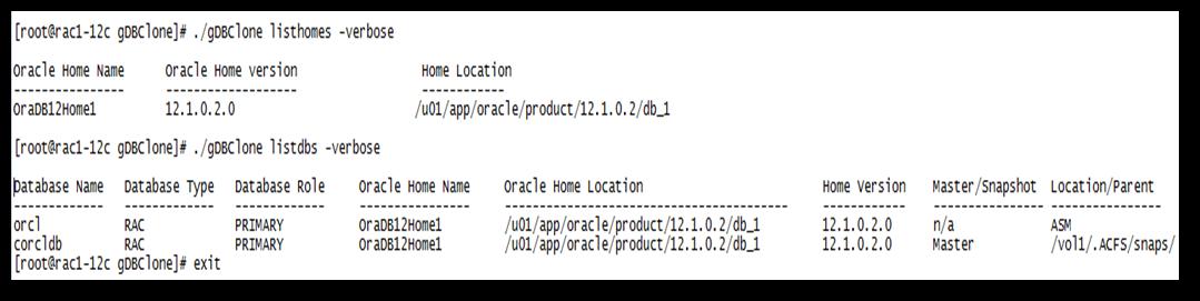 Cenário-6: Criando um Clone Active Data Guard (ADG) com Real-Time Apply usando o gDBclone