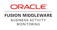 Oracle Fusion Middleware - Business Activity Monitoring