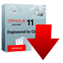 Download Oracle Solaris 11.2