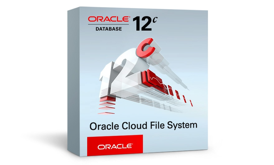 Oracle Cloud File System