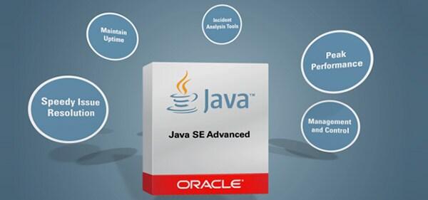 Java SE Video