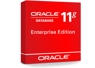 Oracle Database 11g