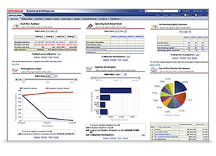 Oracle Financial Analytics