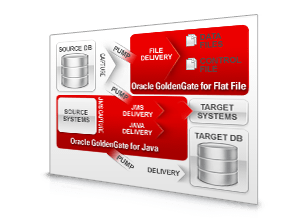 Oracle GoldenGate Application Adapters