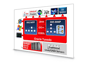 Oracle Tuxedo Application Runtime for IMS