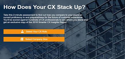 CX Assessment Tool