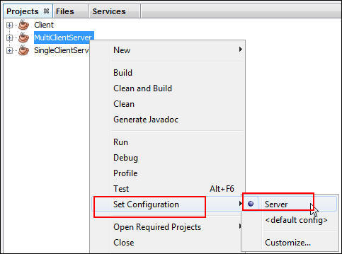 Java SE 8: Getting Started with Socket Programming